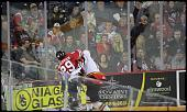 Name: 141016-icedogs-bulldogs-2-022.jpg    
