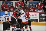 Name: 141016-icedogs-bulldogs-2-003.jpg    