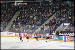 Name: 141016-icedogs-bulldogs-2-008.jpg    
