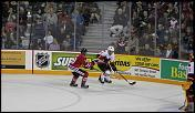 Name: 141016-icedogs-bulldogs-2-036.jpg    