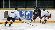 Name: 120830_icedogs-black_and_white_0065.jpg    