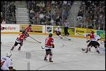 Name: 141016-icedogs-bulldogs-1-064.jpg    