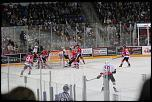Name: 141016-icedogs-bulldogs-2-040.jpg    