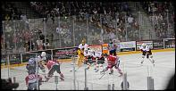 Name: 141016-icedogs-bulldogs-1-088.jpg    