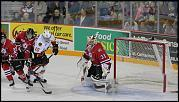 Name: 141016-icedogs-bulldogs-1-115.jpg    