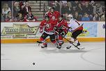 Name: 141016-icedogs-bulldogs-1-093.jpg    