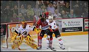 Name: 141016-icedogs-bulldogs-3-021.jpg    