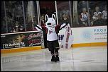 Name: 141016-icedogs-bulldogs-1-033.jpg    
