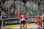 Name: 141016-icedogs-bulldogs-1-067.jpg    