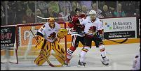Name: 141016-icedogs-bulldogs-3-020.jpg    